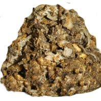 Panse de boeuf rumen 10 x 1 kg kg 2